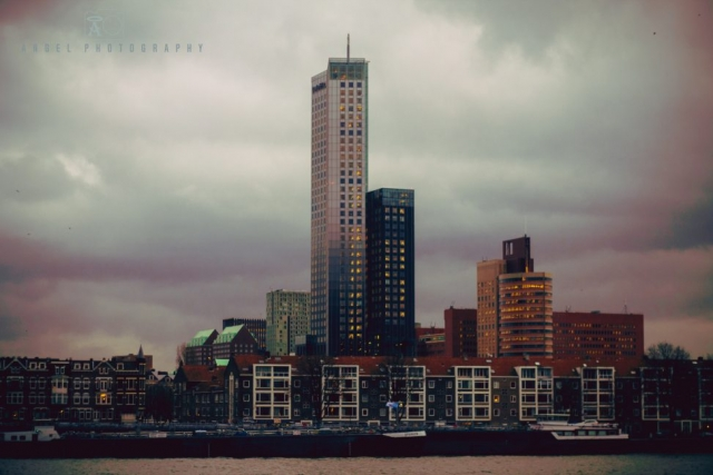 Rotterdam, Cityscape, Winter Season, Day Tour in Rotterdam, Contemporary City