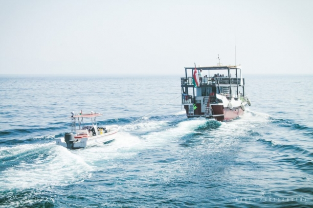Dibba, Oman, Landscape, Dhow Cruise, Sailing,