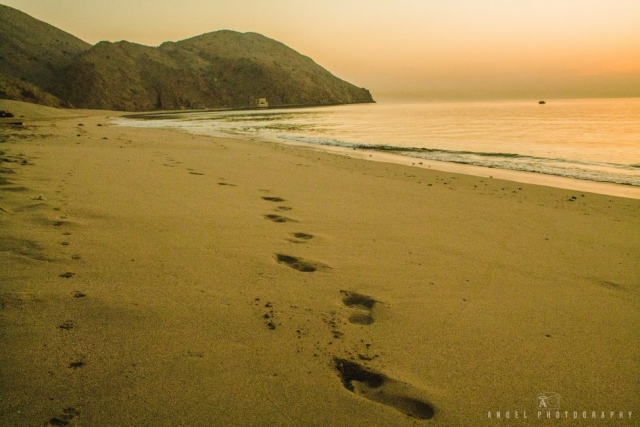 Dibba, Oman, Landscape, Yellow Hour, Foot Steps, Sea shore, Horizon