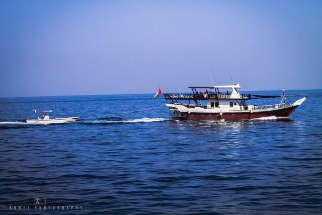 Dibba, Oman, Landscape, Dhow Cruise, Musandam Tour, Sailing