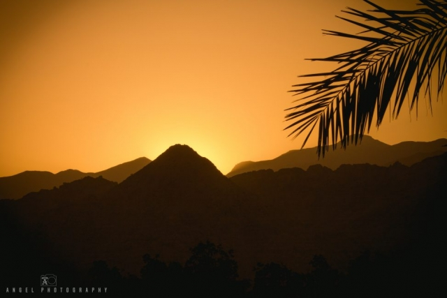 Dibba, Oman, Landscape, Dhow Cruise, Musandam Tour, Sunset, Rock Mountains