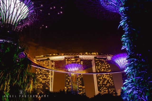 Night in Singapore, Marina Bay Sands, Gardens by the bay, Singapore Cityscape