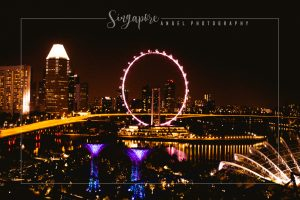 Singapore Eye, Singapore, Long Exposure, Photography