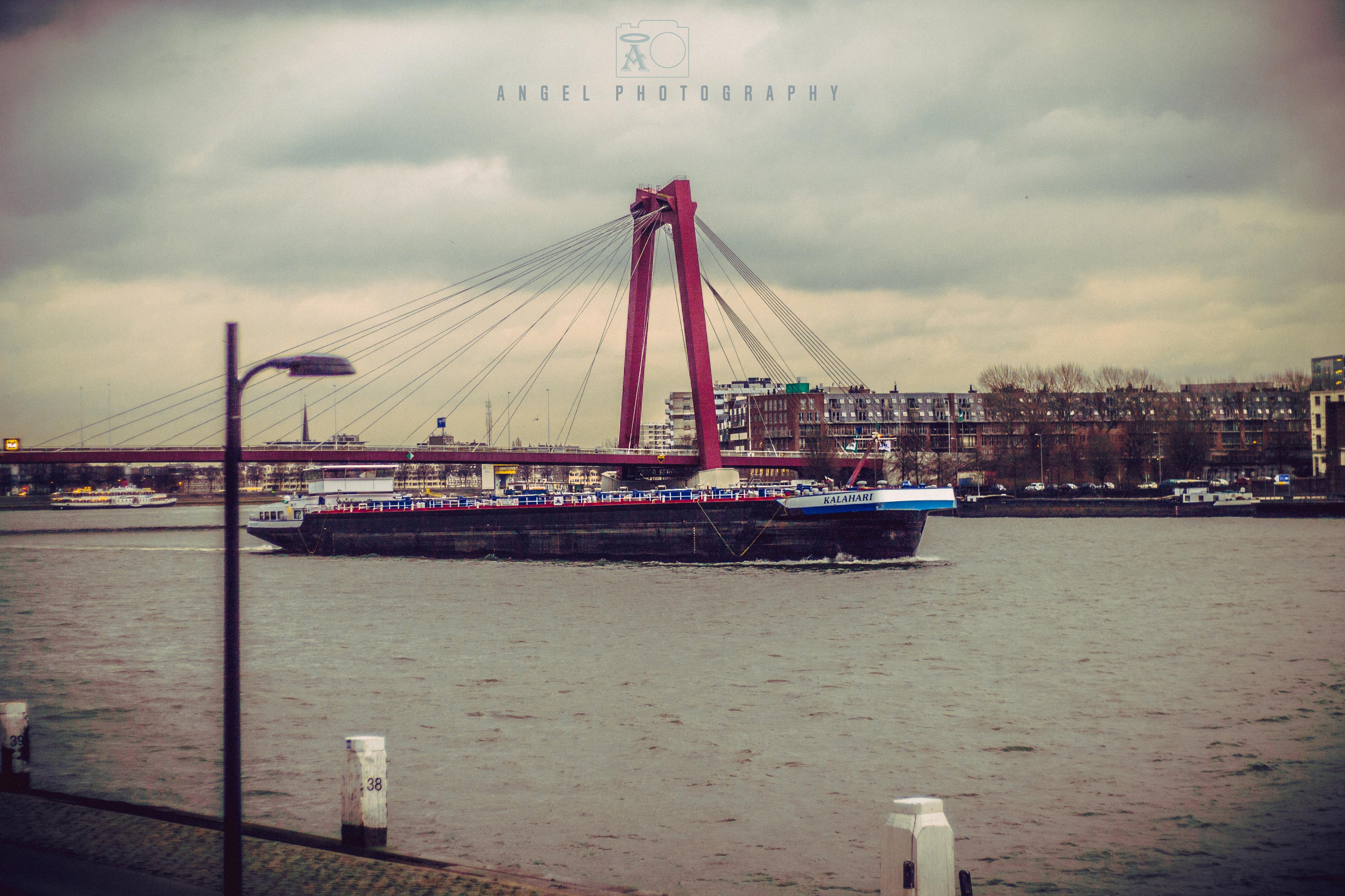 Rotterdam, Cityscape, Winter Season, Day Tour in Rotterdam, Contemporary City, Bridge