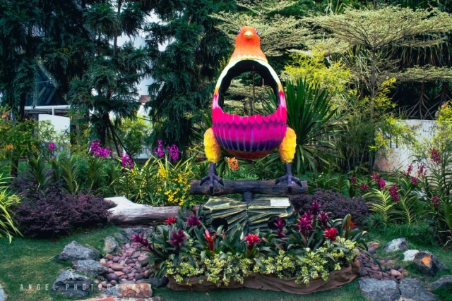 Sentosa Island Singapore, Garden, Singapore Day tour