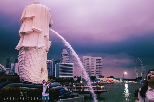 Merlion Singapore, Singapore Day tour, Project Visit Singapore